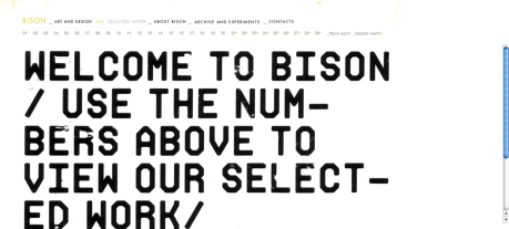 BISON_SELECTED WORK